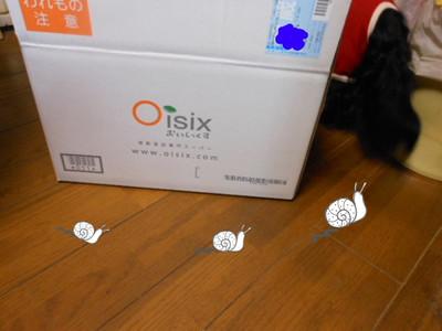 Oisix_005